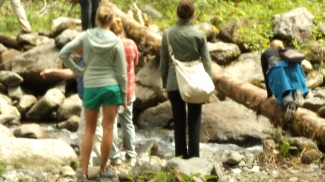 quetzals trail