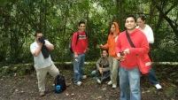 quetzals tral